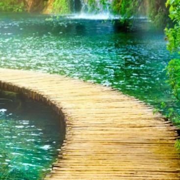 Дорожка к водопаду