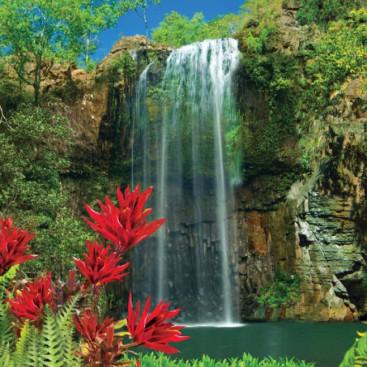 Водопад Экзотика