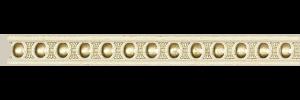 D1020/IVG2(1)
